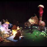 TNT Mushroom Project