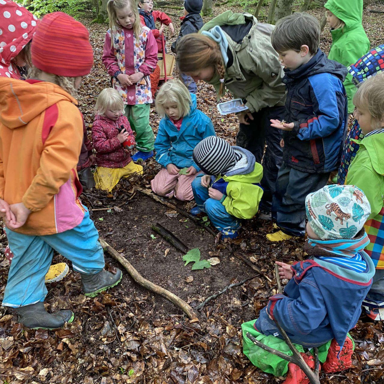 Die Abenteuer unserer Kita-Kinder in der Waldzeit